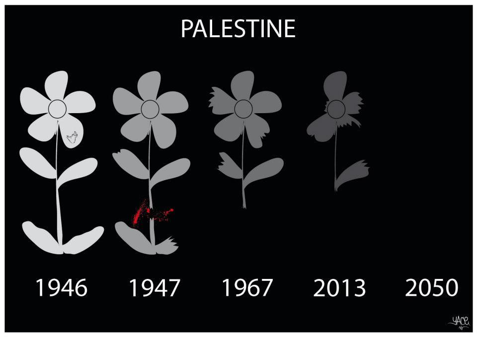 palestine-yace