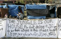 the-jungle-is-our-house